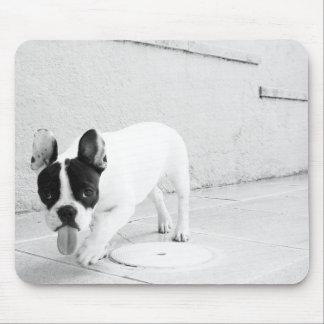 Frenchie insolente Mousepad
