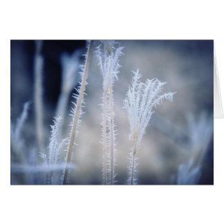 Frio um o inverno Frost em um cartão de Natal
