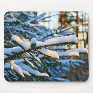 Frost cobriu ramos de pinheiro mouse pad
