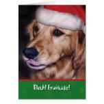 Fruitcake engraçado do Natal do retriever dourado Cartão Comemorativo
