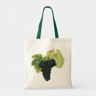 Fruta da comida do vintage, conjunto orgânico da sacola tote budget