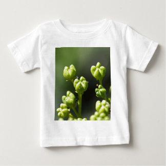 Fruta de uma rua comum (graveolens do Ruta) Camiseta Para Bebê