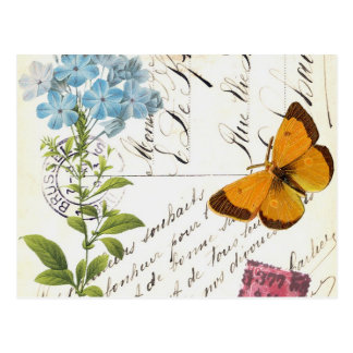 Fruta do vintage e cartão floral do cartão…