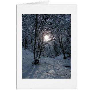Fuga nevado da floresta cartao