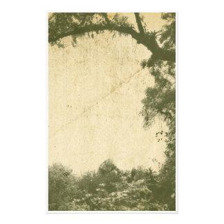 Fundo da árvore do vintage papelaria