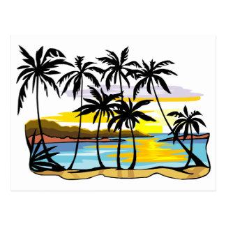 Fundo da palmeira cartao postal