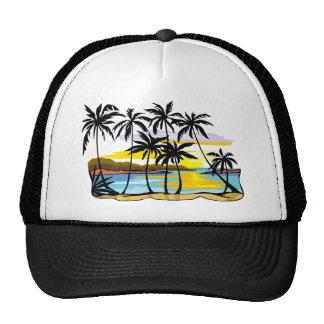 Fundo da palmeira bonés