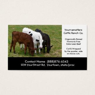 Gados bovinos que cultivam ou que massacram o cartão de visitas