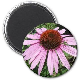 Gafanhoto pequeno em uma flor roxa ímã redondo 5.08cm