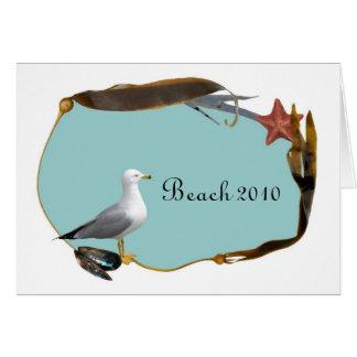 Gaivota no cartão da praia