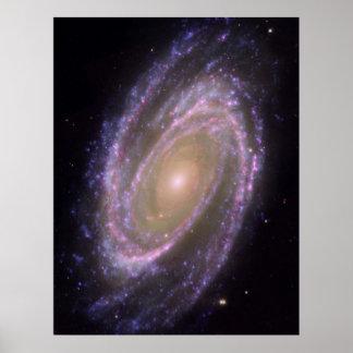 Galáxia M81 Pôster