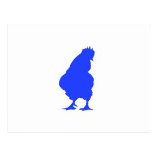 Galinha azul cartão postal