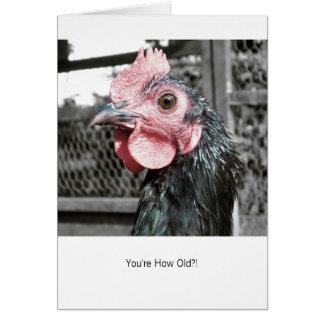 Galinha chocada - cartão de aniversário engraçado