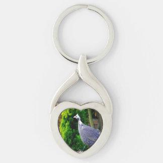 Galinha-do-mato protegido com capacete azul que chaveiro coração torcido cor prata