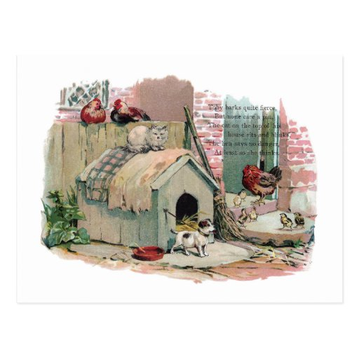 Galinhas, gato e cão do descascamento cartoes postais