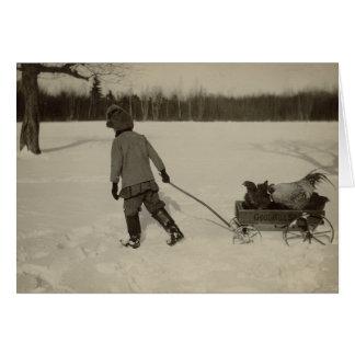 Galinhas no cartão do feriado da neve