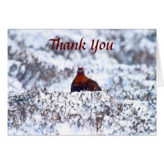Galo silvestre em uns cartões de agradecimentos do