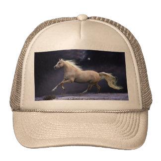 galope do cavalo boné