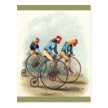 Galos da equitação cartão postal