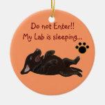 Gancho de porta do sono do filhote de cachorro do  ornamento