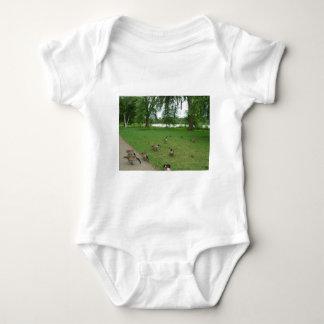Gansos canadenses pelo lago durante o verão camisetas