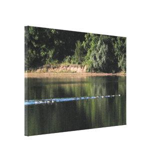 Gansos na imagem do lago impressão em tela