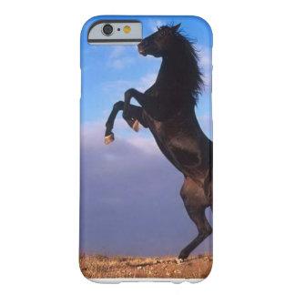 Garanhão preto selvagem que eleva o cavalo capa barely there para iPhone 6