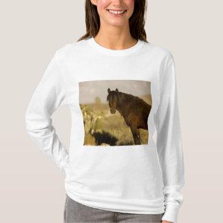 Garanhão selvagem do mustang, rebanho de Wheeler Camiseta