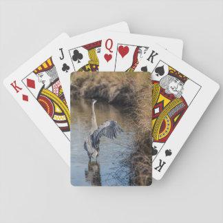 Garça-real nos cartões de jogo da água baralho