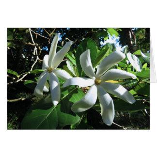 Gardenia de Tahitian Cartão Comemorativo