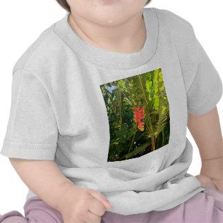 Garra havaiana da lagosta do estilo das maravilhas camiseta