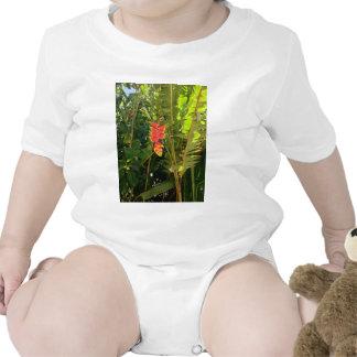 Garra havaiana da lagosta do estilo das maravilhas macacãozinho para bebês