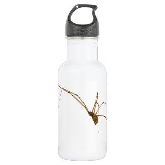 Garrafa D'água Aranha