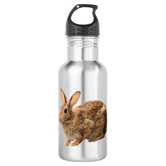 Garrafa D'água Coelho de coelho selvagem do coelho peluches