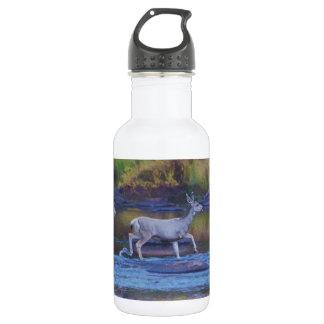 Garrafa D'água Gama e jovem corça dos cervos de mula