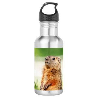 Garrafa D'água Groundhog novo