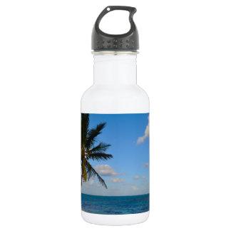 Garrafa D'água Palmeira em uma praia