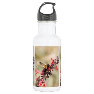 Garrafa de água com a abelha na flor do salvia