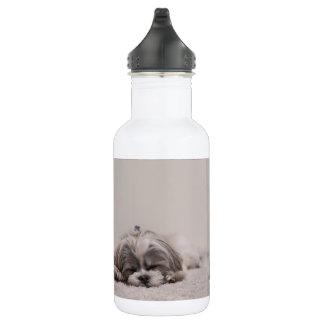 Garrafa de água do sono do tzu de Shih, cão do