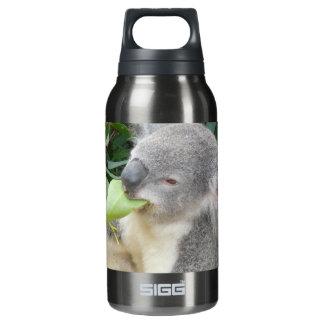 Garrafa De Água Térmica Koala que come a folha da goma