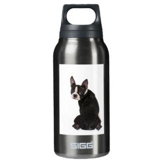 Garrafa De Água Térmica Liberdade de Boston Terrier