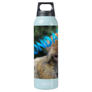 Garrafa De Água Térmica Macaco triste sobre segunda-feira