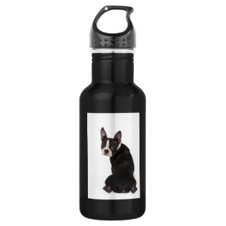 Garrafa Liberdade de Boston Terrier