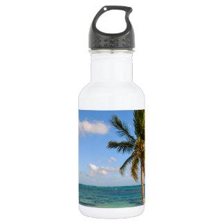 Garrafa Palmeira e praia