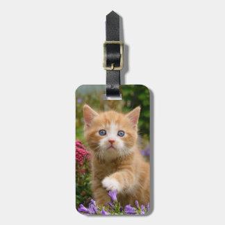 Gatinho bonito do gengibre em um jardim etiqueta de bagagem