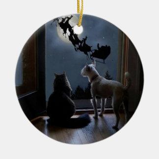 Gatinho, cão e enfeites de natal do papai noel