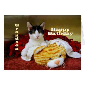 Gatinho do feliz aniversario do neto com tigre do cartão comemorativo