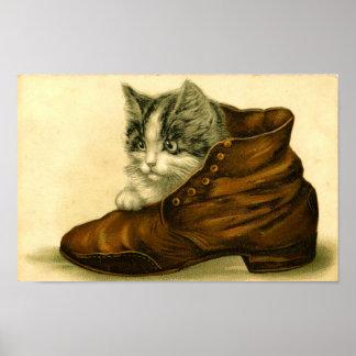 Gatinho do vintage no poster dos calçados
