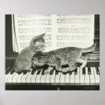 Gatinho dois que joga no teclado de piano, (B&W) Pôsteres