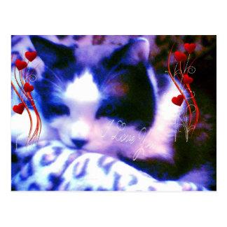 gatinho dos namorados do sapato de neve eu te amo cartão postal